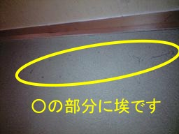 CA390709.jpg