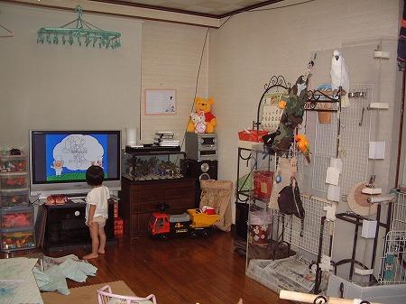 s-2008-08-22 038