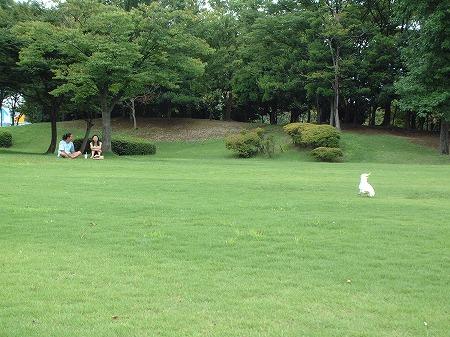 s-2008-08-26 008