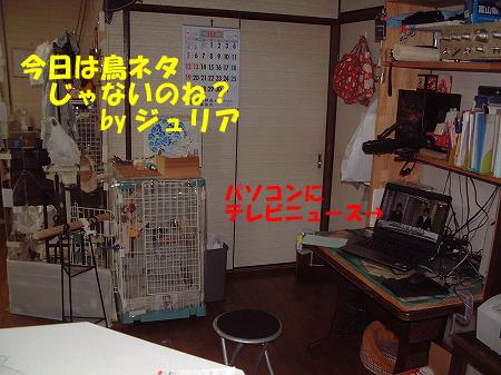 PCテレビ3