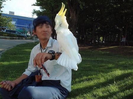 s-2008-08-22-001.jpg