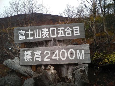 TS371758.jpg