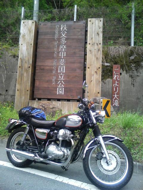 TS372194.jpg