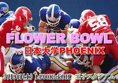 2009s_flowerbowl.jpg