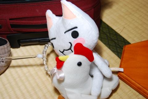 ツシロお兄ちゃんのトリさんと遊んでます
