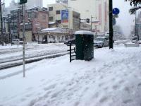 ooyuki090126.jpg