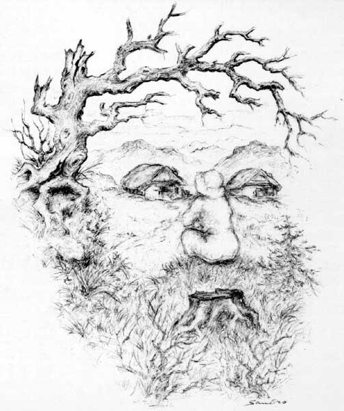 sandro-delprete_berggeist-spirit-of-woods-1995.jpg