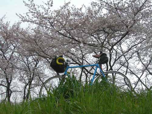 DSCN2946.jpg