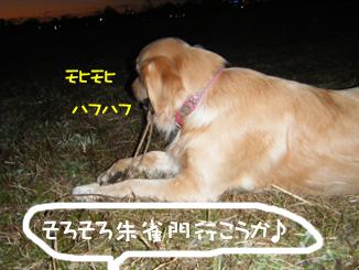 DSCF0770.jpg