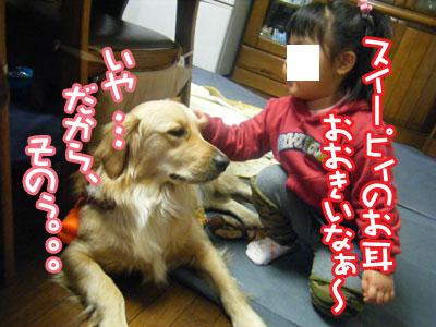 DSCF6094.jpg