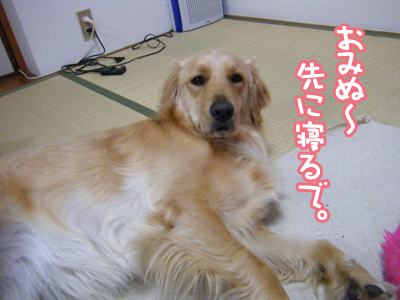 DSCF6673.jpg