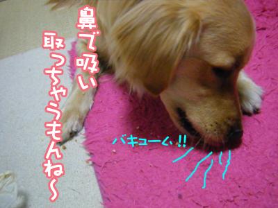 DSCF6757.jpg