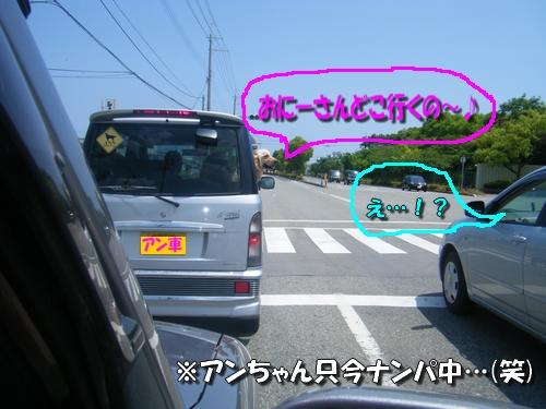 DSCF8239.jpg