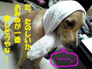 PA0_0160a.jpg