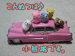 PA0_0307.jpg