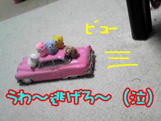 PA0_0308.jpg