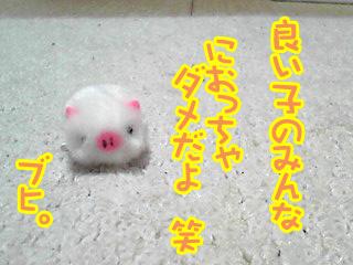 PA0_03141127.jpg