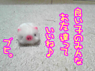 PA0_0314abc.jpg