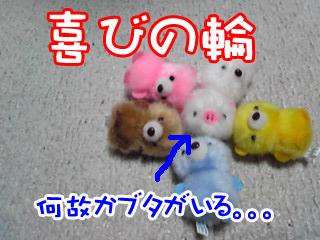 PA0_0383a.jpg
