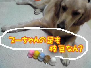 PA0_03911127.jpg