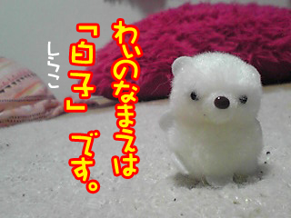 PA0_0406.jpg
