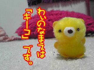 PA0_0408.jpg
