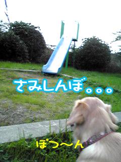PA0_0451a.jpg