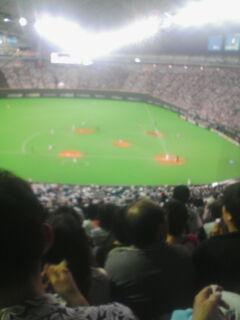 球場から見た景色