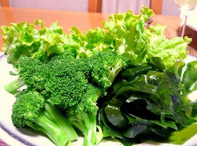 081204緑のサラダ