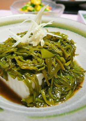 090722めかぶ豆腐
