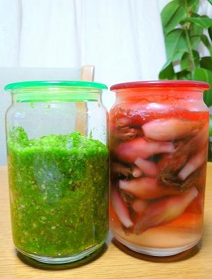 090805赤と緑の保存食