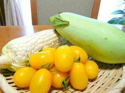 090816野菜