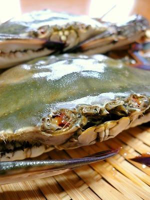 090830生わたり蟹