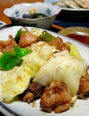 090909ホルモンと野菜炒め