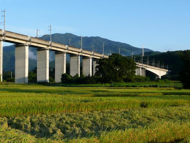 吾妻川橋梁7