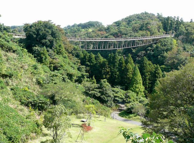 森のわくわく橋1