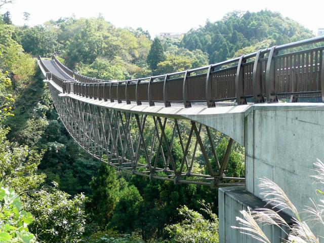 森のわくわく橋3