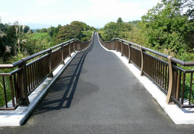森のわくわく橋4