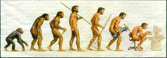 ヒトの進化?