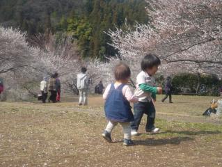 梅の公園にて