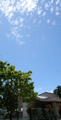 とってもいいお天気。