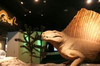 ちっさい恐竜もいたね。