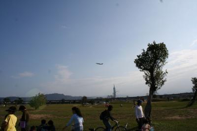 オー飛行機ですか !!