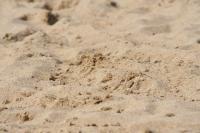 黄金の砂だそうで。