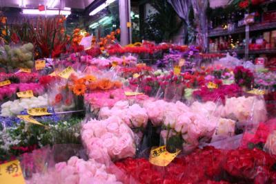色とりどりのお花がたくさん!