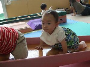 haihai_20081008110856.jpg