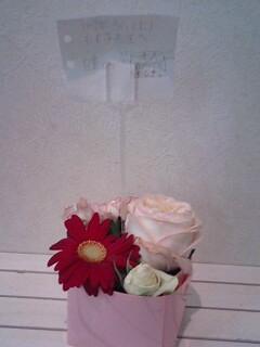ひとみちゃんの花
