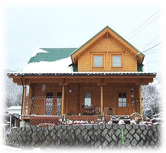 雪の日ログ