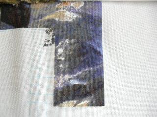 CIMG1174.jpg