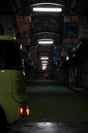 11緑じゅうたん